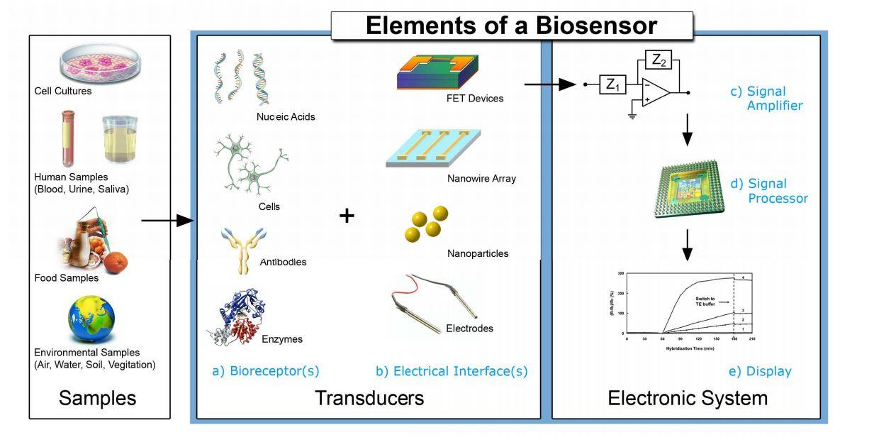 Biosensors nano